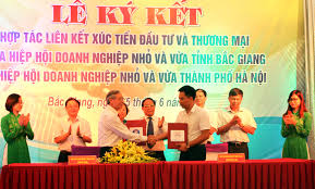 Dịch thuật tại Bắc Giang